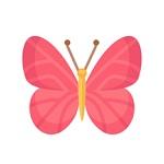 粉蝶社区直播app下载安装成年版