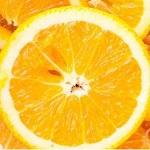 橙子直播app下载手机版无限次数