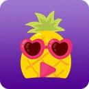 菠萝菠萝蜜视频在线播放官网福利版