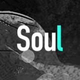 Soul破解版下载安装