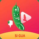 丝瓜视频下载app污版在线观看在线下载版