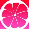 蜜柚app汅api免费官方版