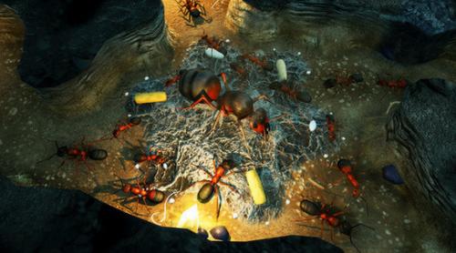 地下蚁国中文版手机版