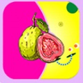 芭乐丝瓜草莓向日葵小猪鸭脖污