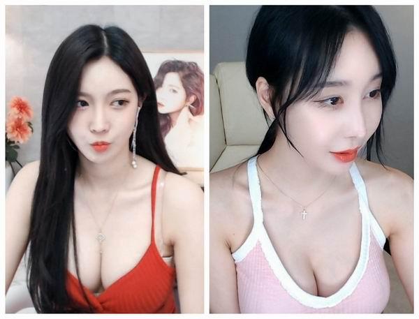 蕾丝猫官网app无圣光在线观看:韩国青草视频19禁福利的看片神器软件